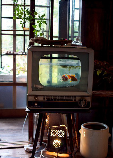 Old TV to tank