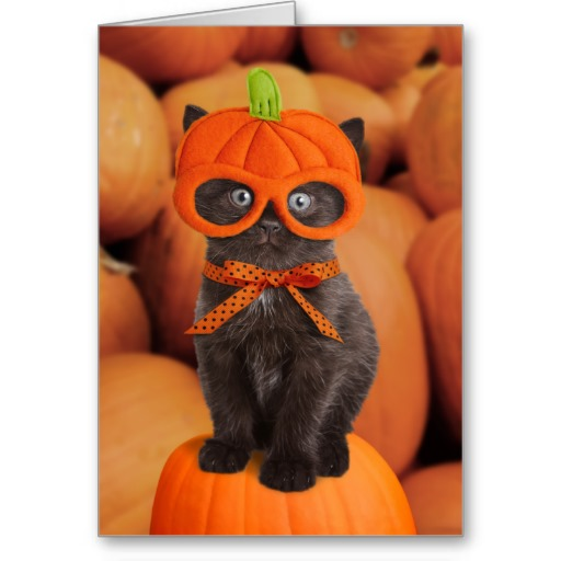 Funny Halloween Cards To Send #19