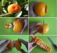 DIY How to Peel Mandarin