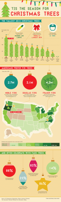 Surprising facts and figures about the season's trees