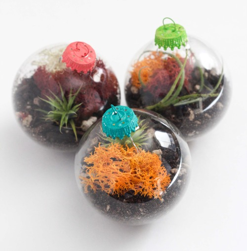 Ornament Terrariums | DIY