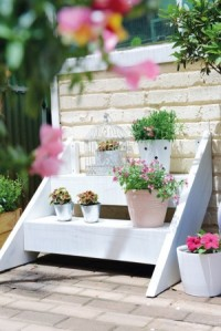 A step in the right direction | Purpose steps for displaying flowering potted plants