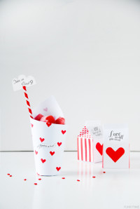 Valentine Treat Boxes | DIY Valentines Day Ideas