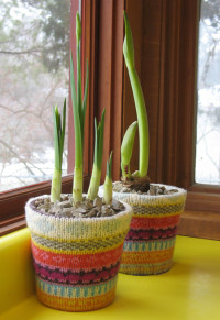 Sweater-covered Flowerpots