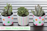 DIY Neon Polka Dot Pots