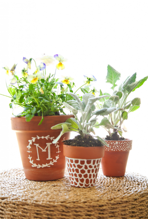 Painted Potted Plants From Lil' Luna