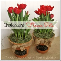 A Fun and Versatile Gift Idea…DIY Chalkboard Flower Pots