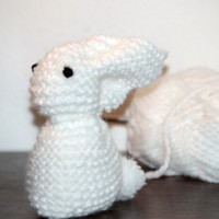 A white *rabbit* for Christmas. Yep !